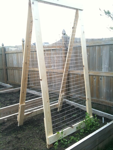 A Frame Vegetable Garden Trellis