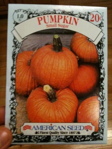 Small Sugar Pumpkins Seed Packet