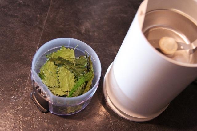 Catnip ready to grind in coffee grinder