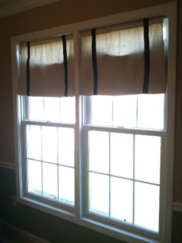 Dropcloth Curtains