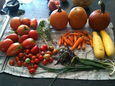 Sunday Harvest.jpg