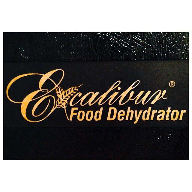 Excalibur Dehydrator Logo
