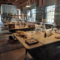 Visiting the Edison & Ford Winter Estates in Fort Myers, FL